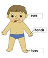 Body Parts activities and printables