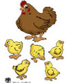 chicks and hen rhyme and activity