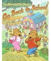 Berenstein's go back to school book