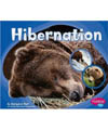 hibernation book