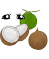 coconut science lessons, games and activities