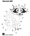 Raccoon printables and coloring page