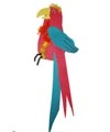 Macaw and parrot craft and rhyme