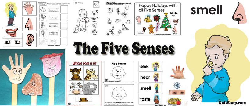 Preschool and kindergarten Five Senses activities and crafts