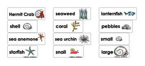 Hermit the Crab word wall activities and printables for preschool and kindergarten