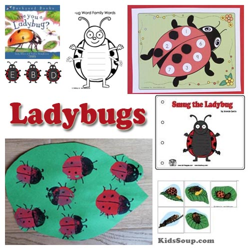 Preschool ladybugs science lesson, activities, crafts and games