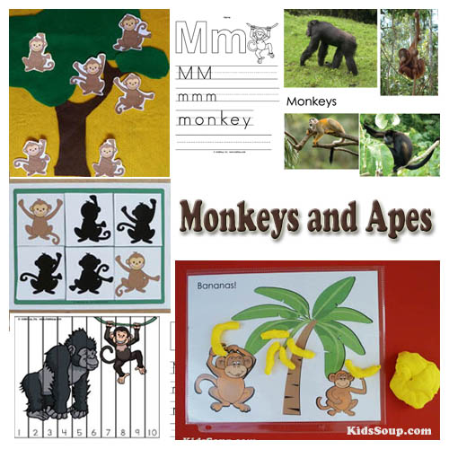 Preschool monkeys activities and crafts