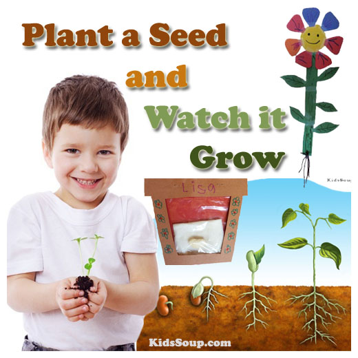 Plant A Seed And Watch It Grow on Weather Theme For Toddlers