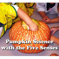 Preschool Kindergarten Pumpkin Science Lesson and Activity