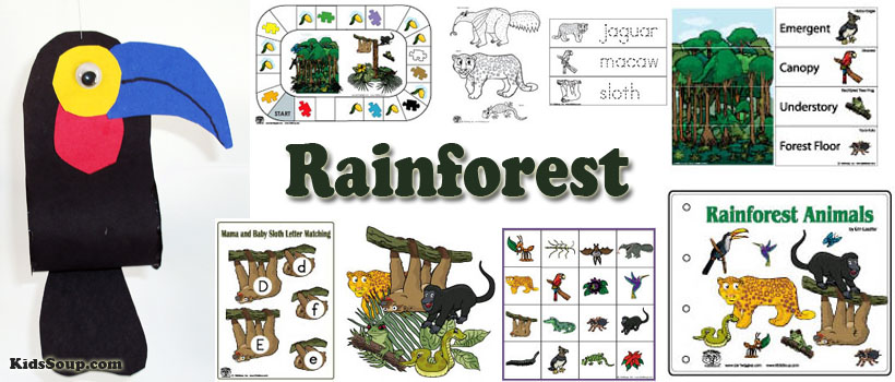Rainforest activities and crafts for preschool and kindergarten
