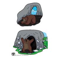 Bear hibernation science lesson and activity for preschool and kindergarten