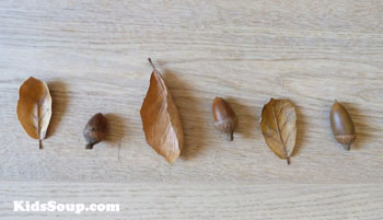 Acorns and fall items pattern activity