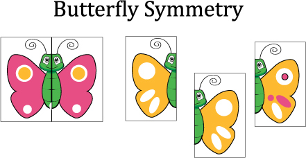 preschool butterfly visual discrimination and matching game