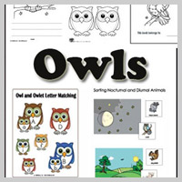 Preschool, Kindergarten Owls and Nocturnal Animals Activities