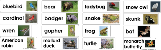 Animals in Winter word wall cards and activities for preschool