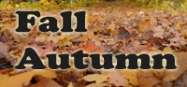 Fall and Autumn themes for preschool and kindergarten