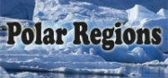 Polar regions themes for preschool and kindergarten