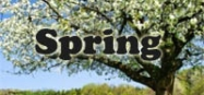 Spring themes for preschool and kindergarten