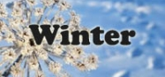 Winter themes for preschool and kindergarten
