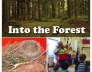 Preschool forest activities, crafts, and lessons