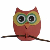 Owl On Branch Bulletin Board Art