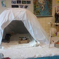 Polar bear crafts kindergarten