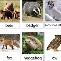 picture relating to The Mitten Animals Printable referred to as The Mitten Preschool Pursuits and Crafts KidsSoup