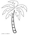palm tree tracing
