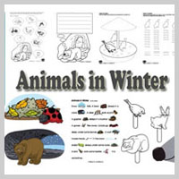 Preschool Kindergarten Animals in Winter Activities and Lessons