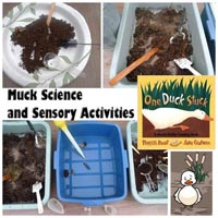 Preschool Kindergarten Muck Science Activities