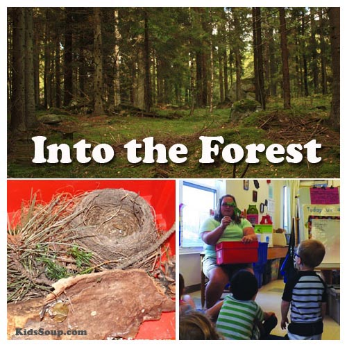 Into The Forest Preschool Weekly Plan And Activities KidsSoup