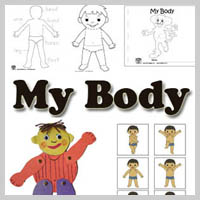 Preschool Kindergarten My Body Activities and Lessons