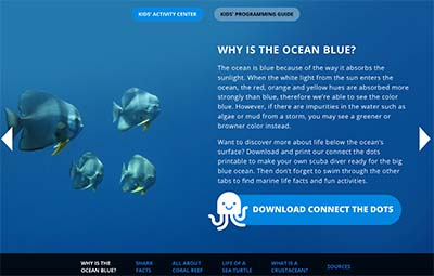 Ocean and ocean animals kids activities and science