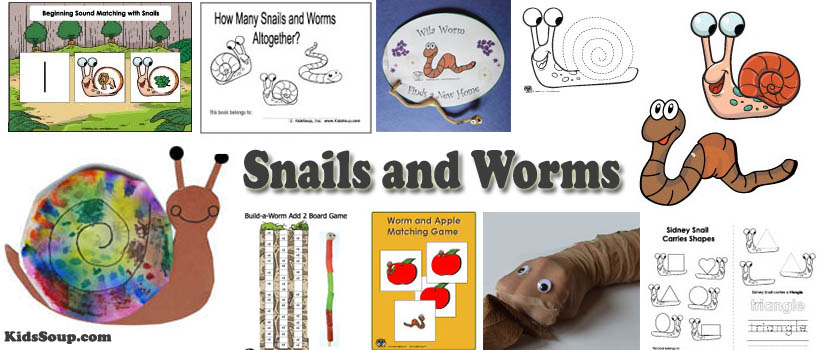 Snails and Worms Preschool Activities and Lessons