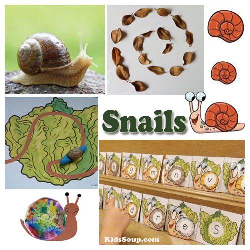 preschool snails activities, crafts, games and science lesson plan
