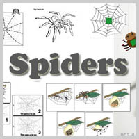 Preschool Kindergarten Spiders Activities and Crafts