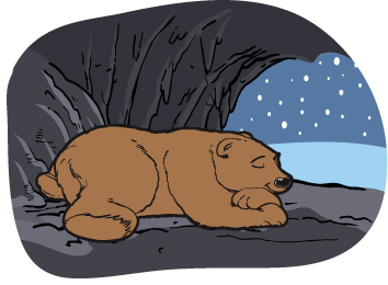 Image result for bear cave winter clip art