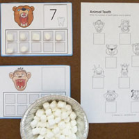 KIndergartenAnimal Teeth Math Activities and printables
