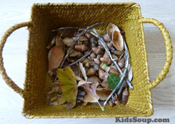 Fall science acorn activity and lesson