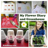 Preschool Kindergarten Flowers Science Activity