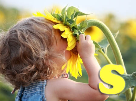 s for sun and sunflower letters of the alphabet preschool activities