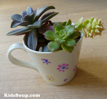 Mother's day tea cup with succulents gift idea and preschool craft