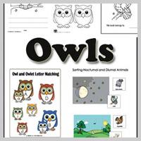 Preschool, Kindergarten Owls and Nocturnal Animals Activities