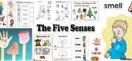 Five Senses activities, crafts, lessons for preschool and kindergarten